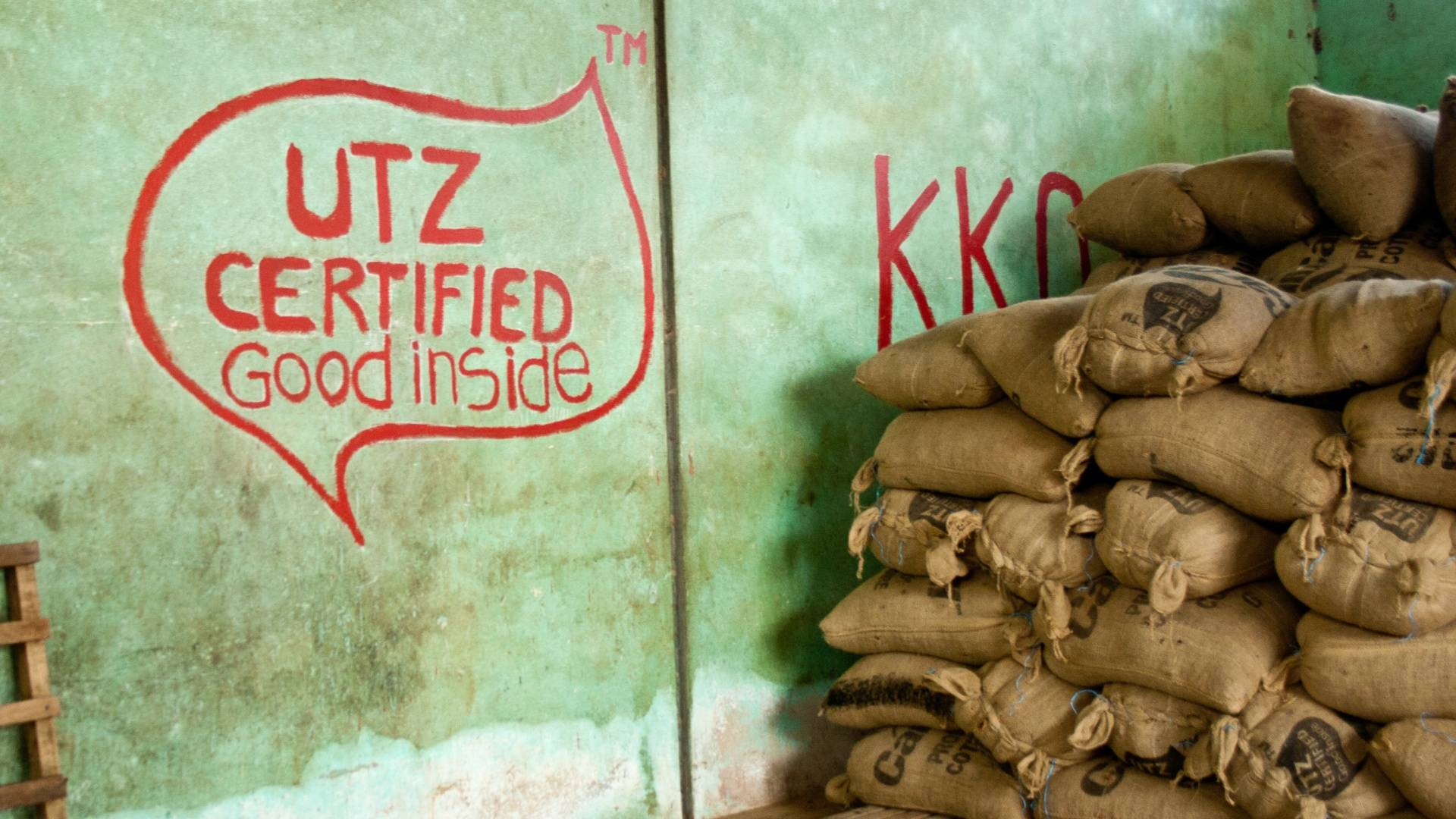 UTZ Certified Cocoa sustainable farming and harvest